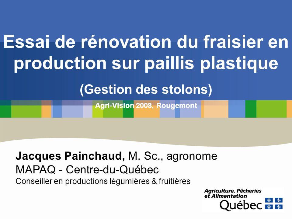 Essai de rénovation du fraisier en production sur paillis plastique