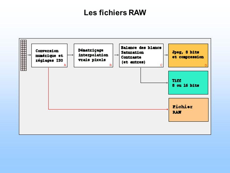 Les fichiers RAW La sensibilité ISO choisie est importante pour les fichiers RAW .