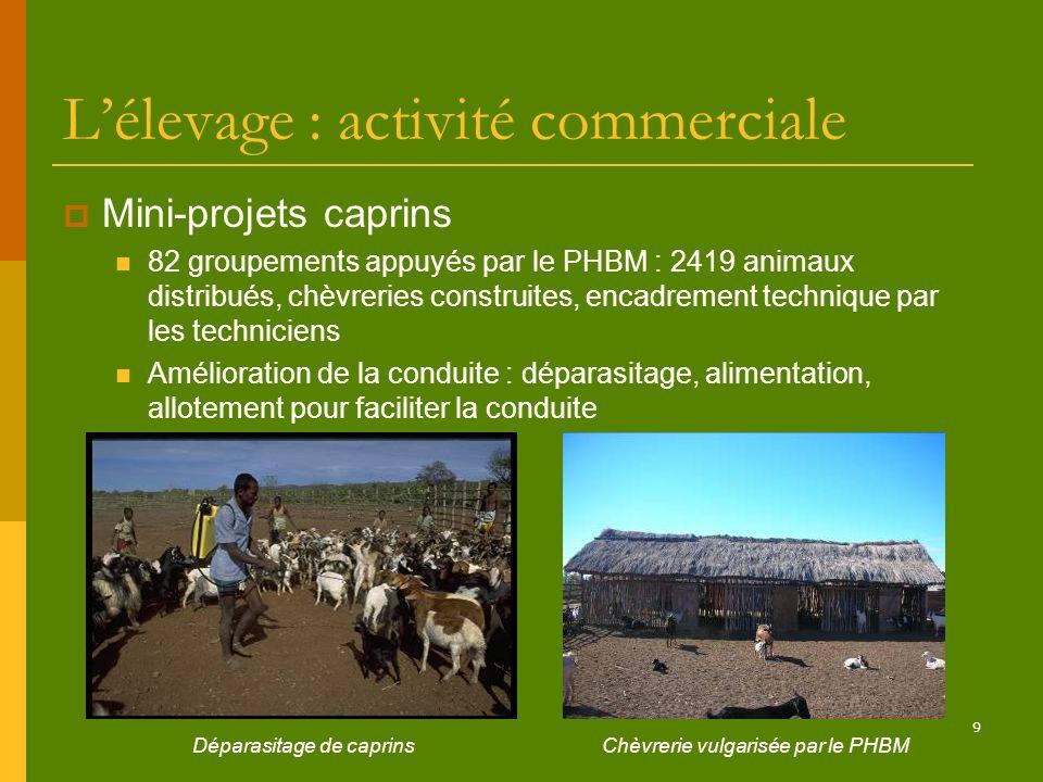 L'élevage : activité commerciale