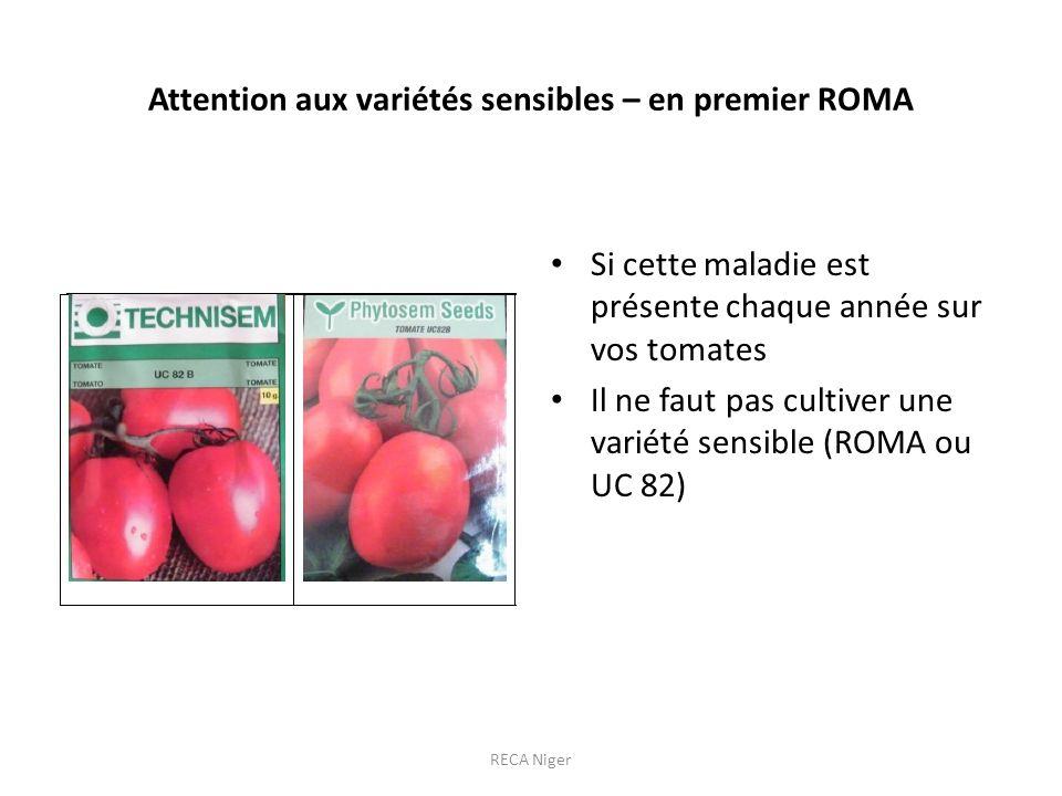 Attention aux variétés sensibles – en premier ROMA