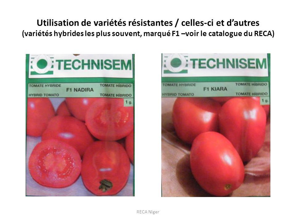 Utilisation de variétés résistantes / celles-ci et d'autres (variétés hybrides les plus souvent, marqué F1 –voir le catalogue du RECA)