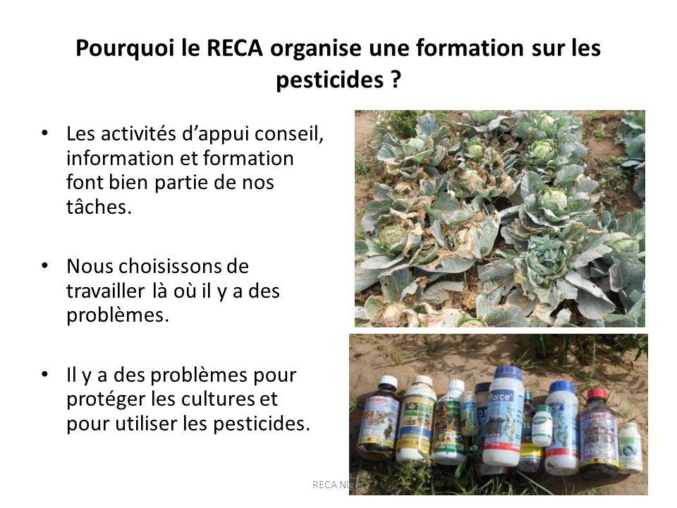 Pourquoi le RECA organise une formation sur les pesticides