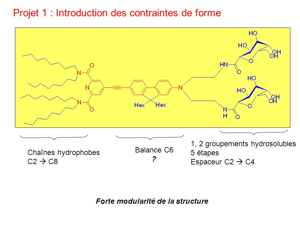 Projet 1 : Introduction des contraintes de forme