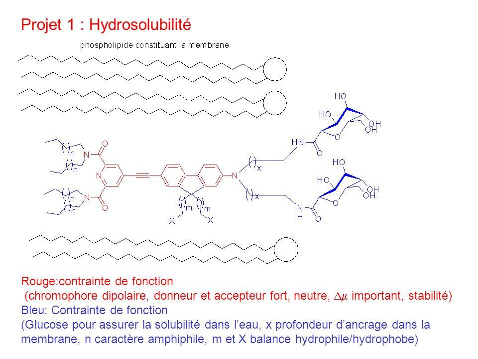 Projet 1 : Hydrosolubilité