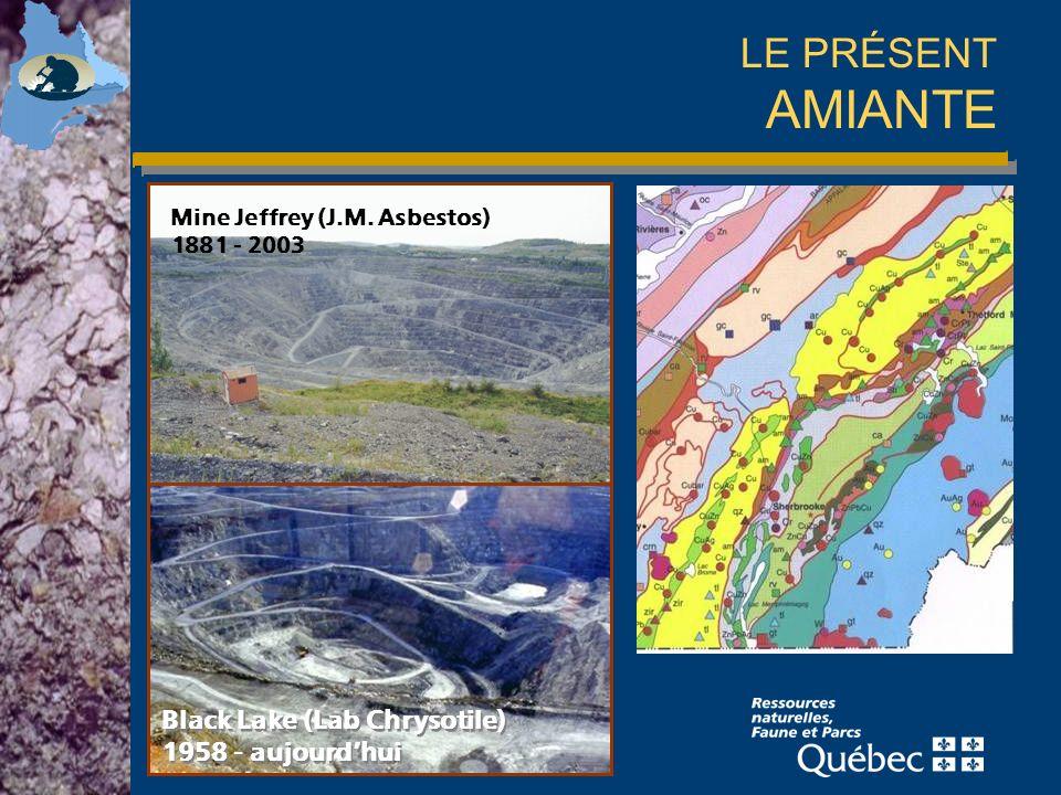 LE PRÉSENT AMIANTE Black Lake (Lab Chrysotile) 1958 - aujourd'hui