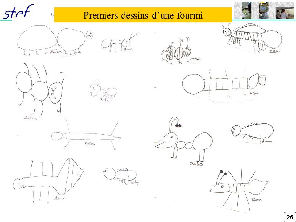 Premiers dessins d'une fourmi