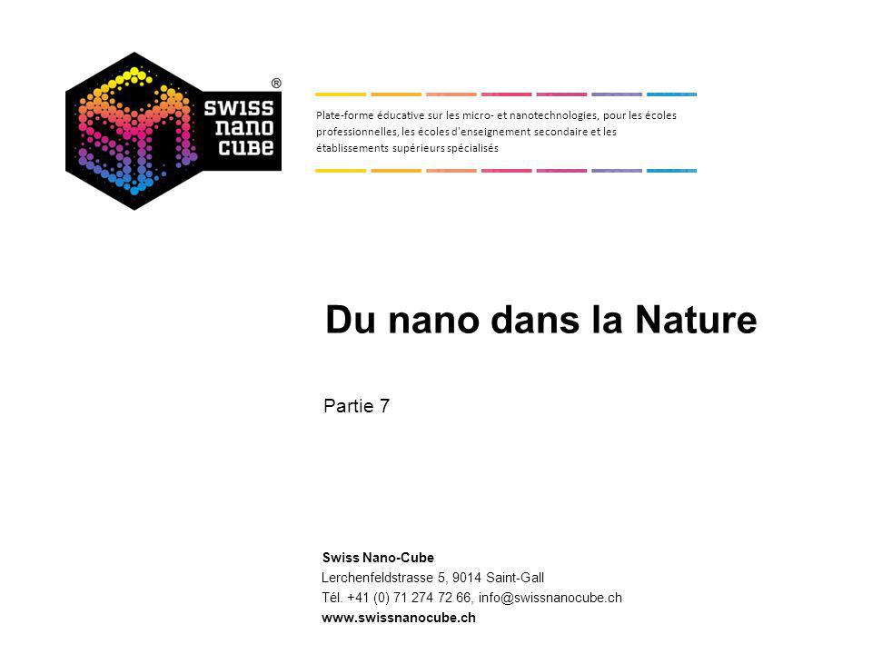 7. L univers nano dans la Nature