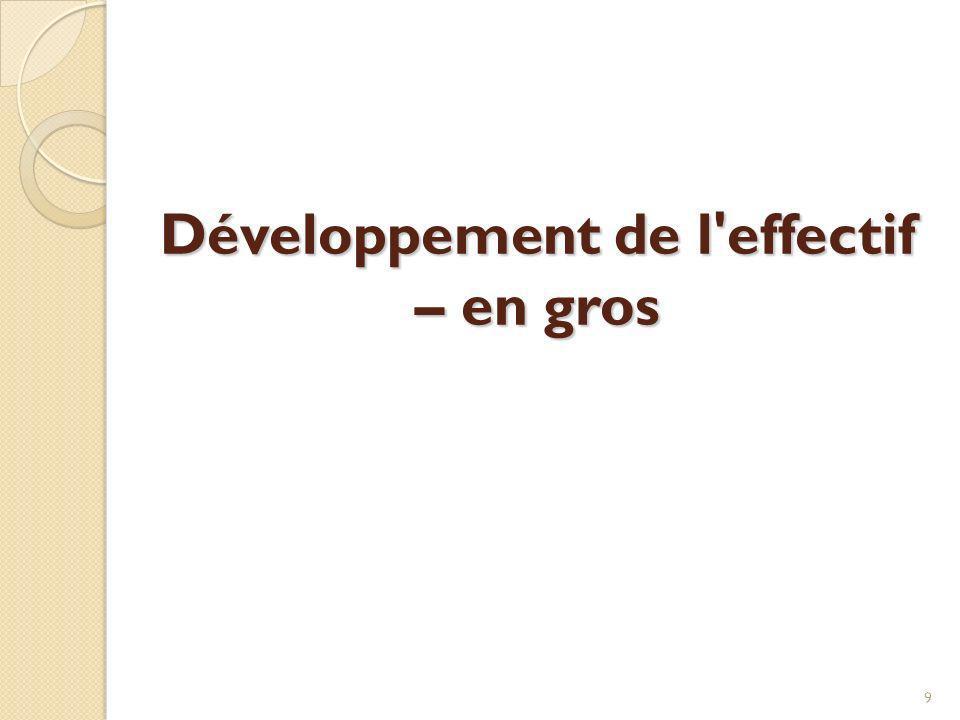 Développement de l effectif – en gros