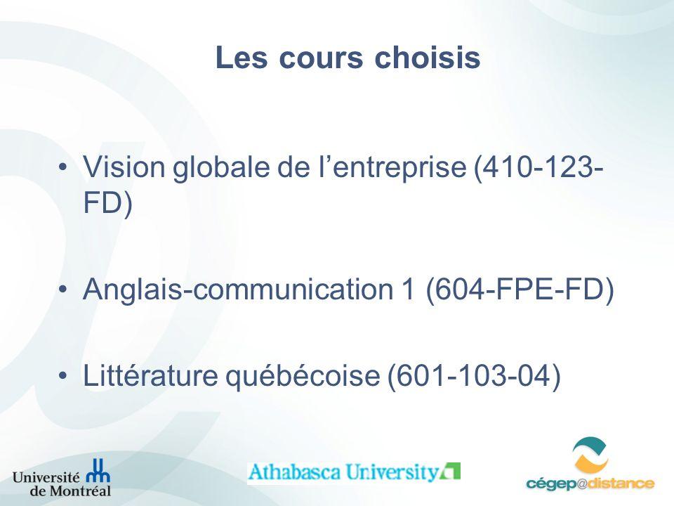 Les cours choisis Vision globale de l'entreprise (410-123-FD)