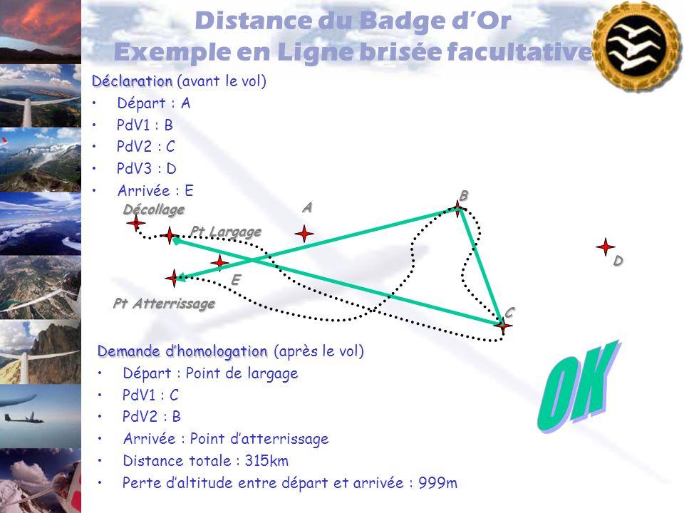 Distance du Badge d'Or Exemple en Ligne brisée facultative