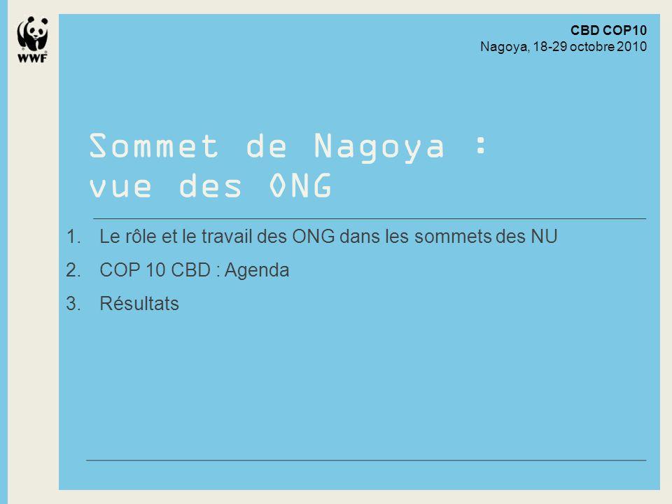 Shorter title Sommet de Nagoya : vue des ONG