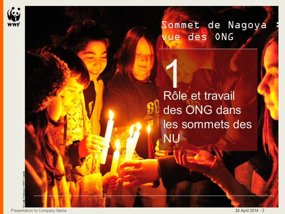1 Rôle et travail des ONG dans les sommets des NU Sommet de Nagoya :