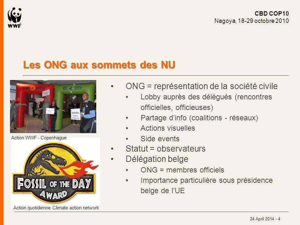 Les ONG aux sommets des NU