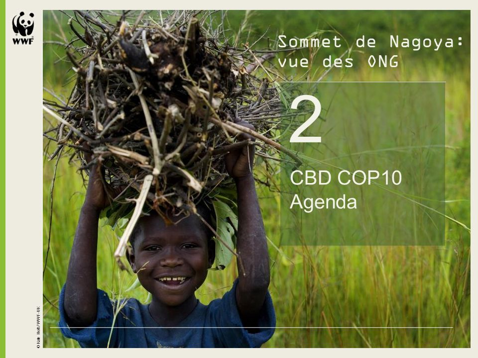 2 CBD COP10 Agenda Sommet de Nagoya: vue des ONG