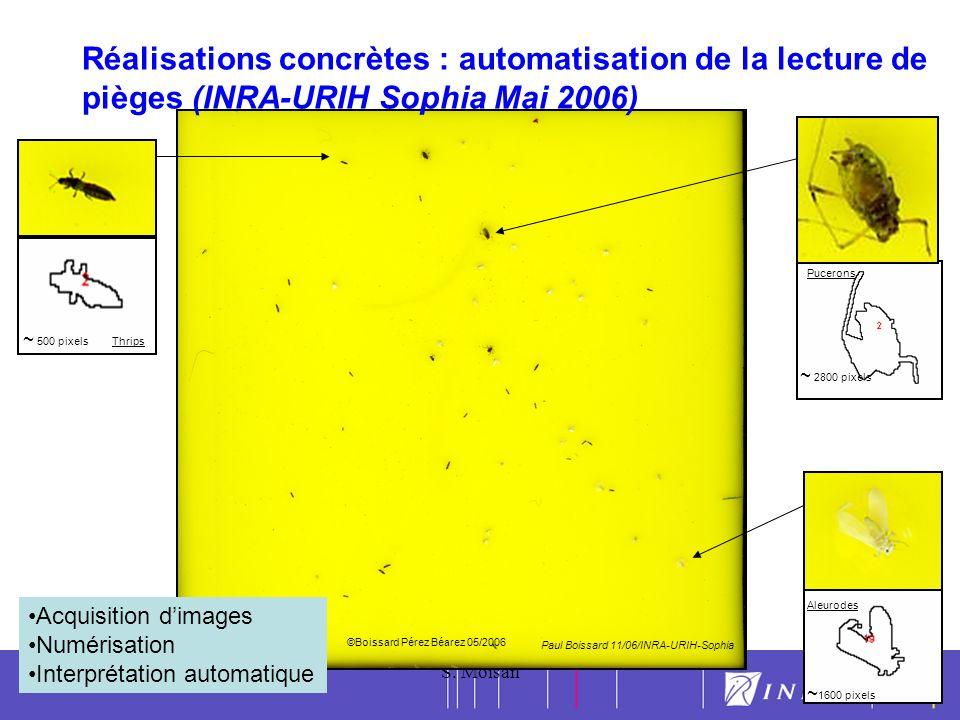 Réalisations concrètes : automatisation de la lecture de pièges (INRA-URIH Sophia Mai 2006)