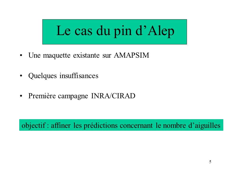 Le cas du pin d'Alep Une maquette existante sur AMAPSIM