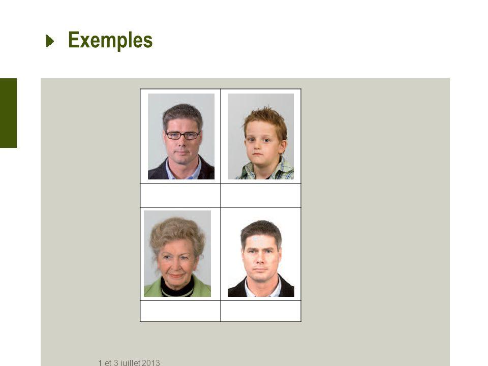 Exemples 1 et 3 juillet 2013