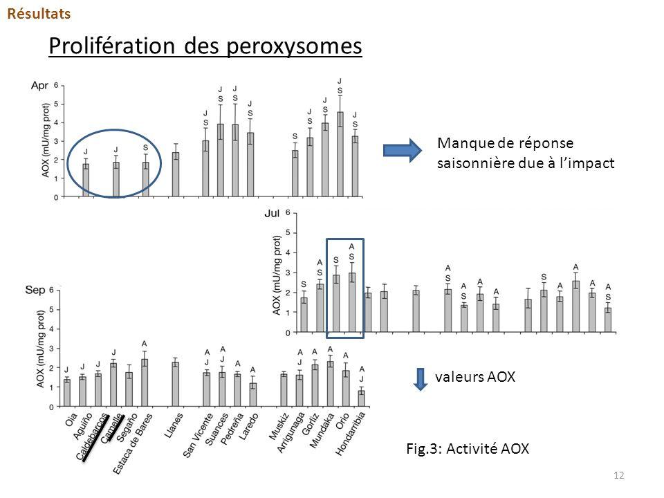 Prolifération des peroxysomes