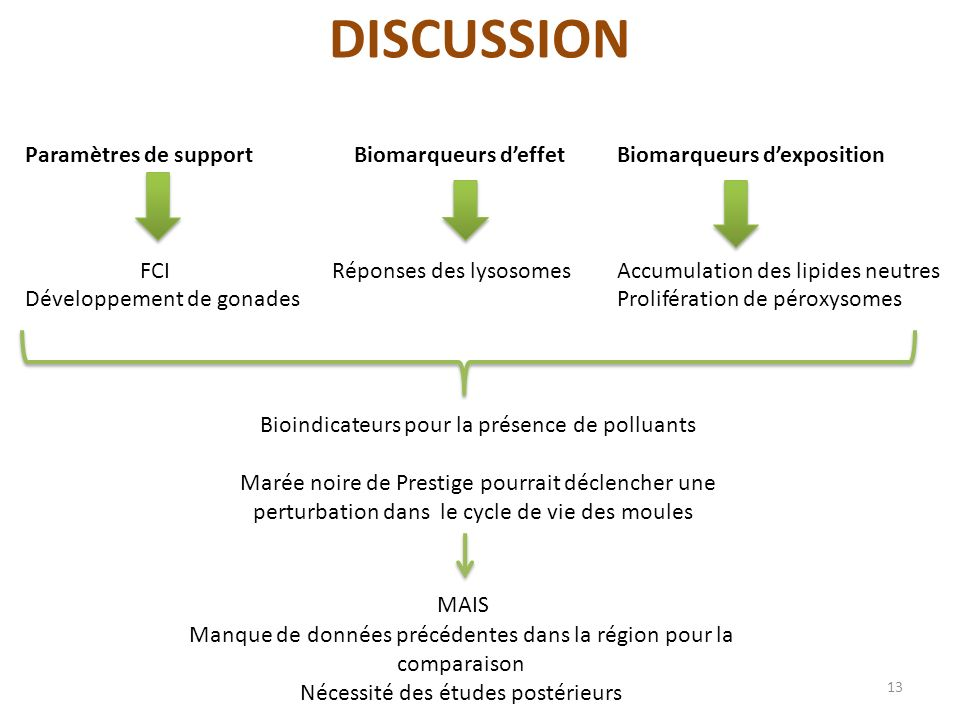 DISCUSSION Paramètres de support FCI Développement de gonades