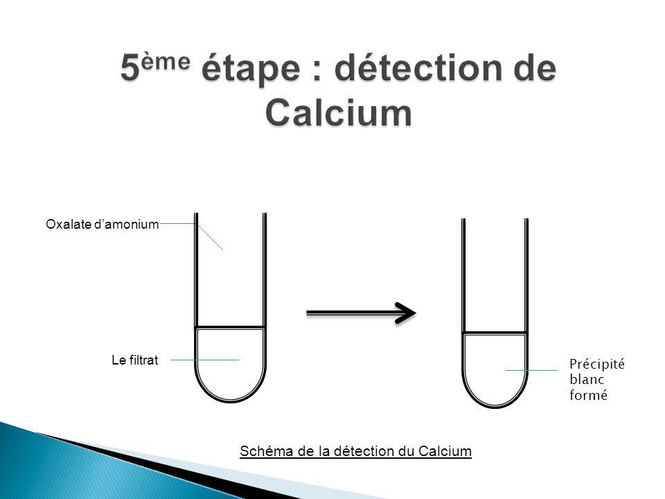 5ème étape : détection de Calcium