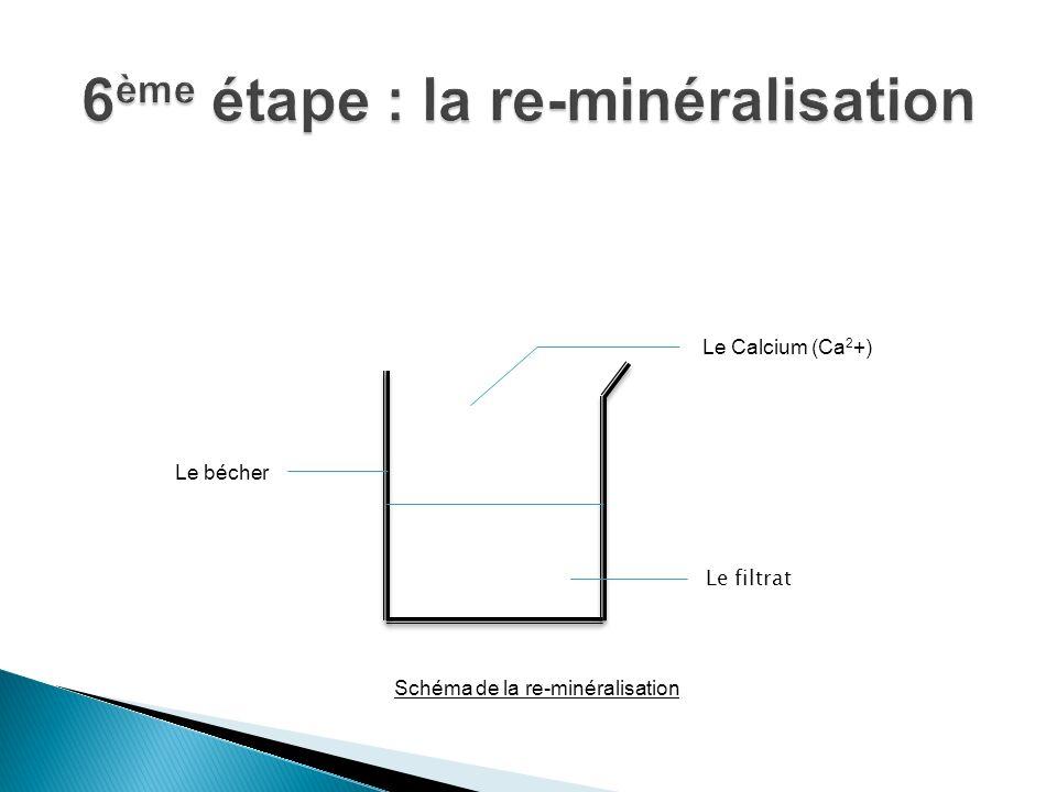 6ème étape : la re-minéralisation