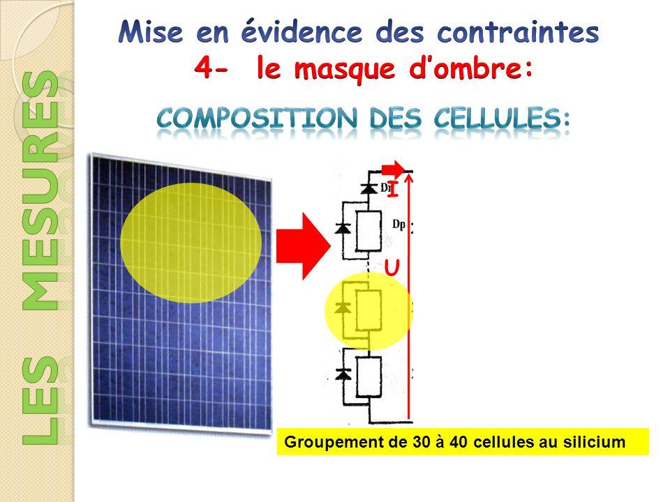 Mise en évidence des contraintes Composition des cellules: