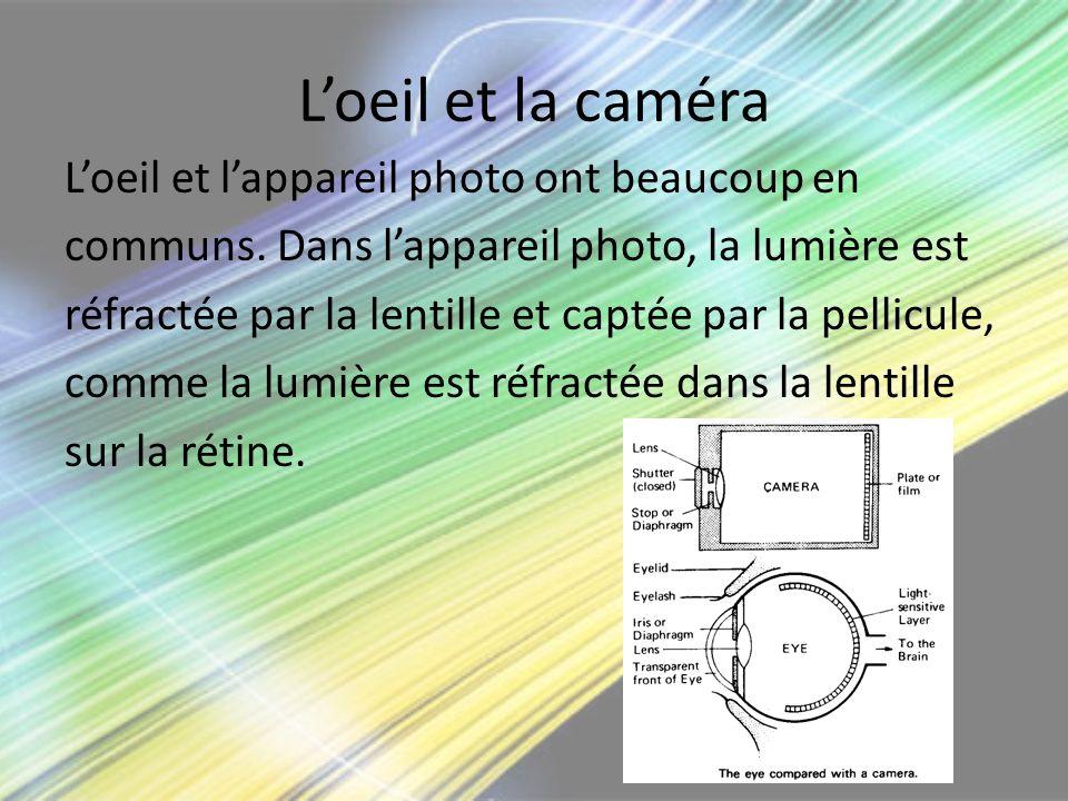 L'oeil et la caméra