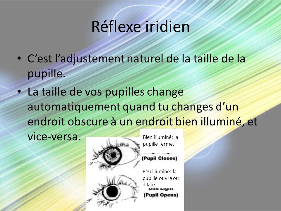 Réflexe iridien C'est l'adjustement naturel de la taille de la pupille.