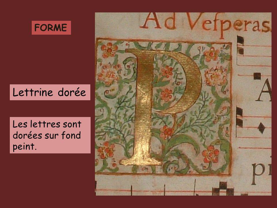 FORME Lettrine dorée Les lettres sont dorées sur fond peint.