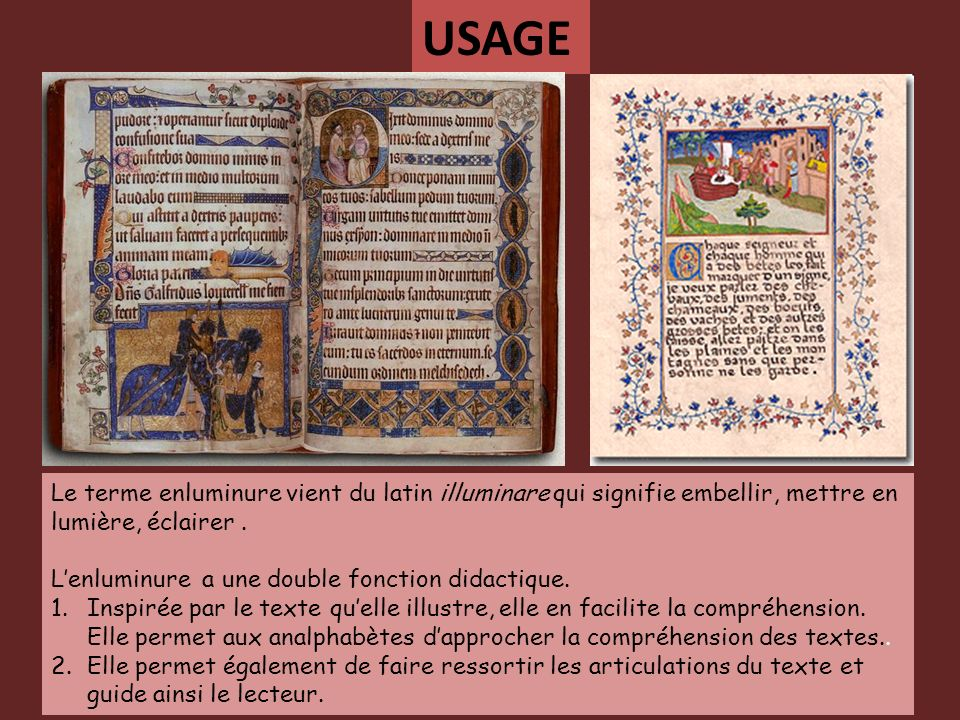 USAGE Le terme enluminure vient du latin illuminare qui signifie embellir, mettre en lumière, éclairer .
