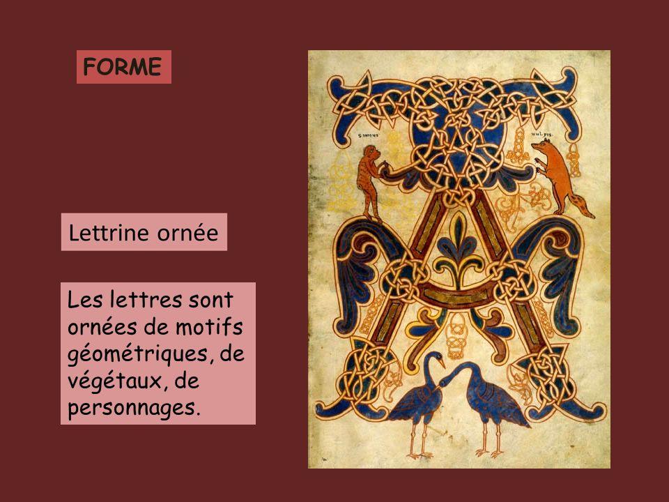 FORME Les lettres sont ornées de motifs géométriques, de végétaux, de personnages.