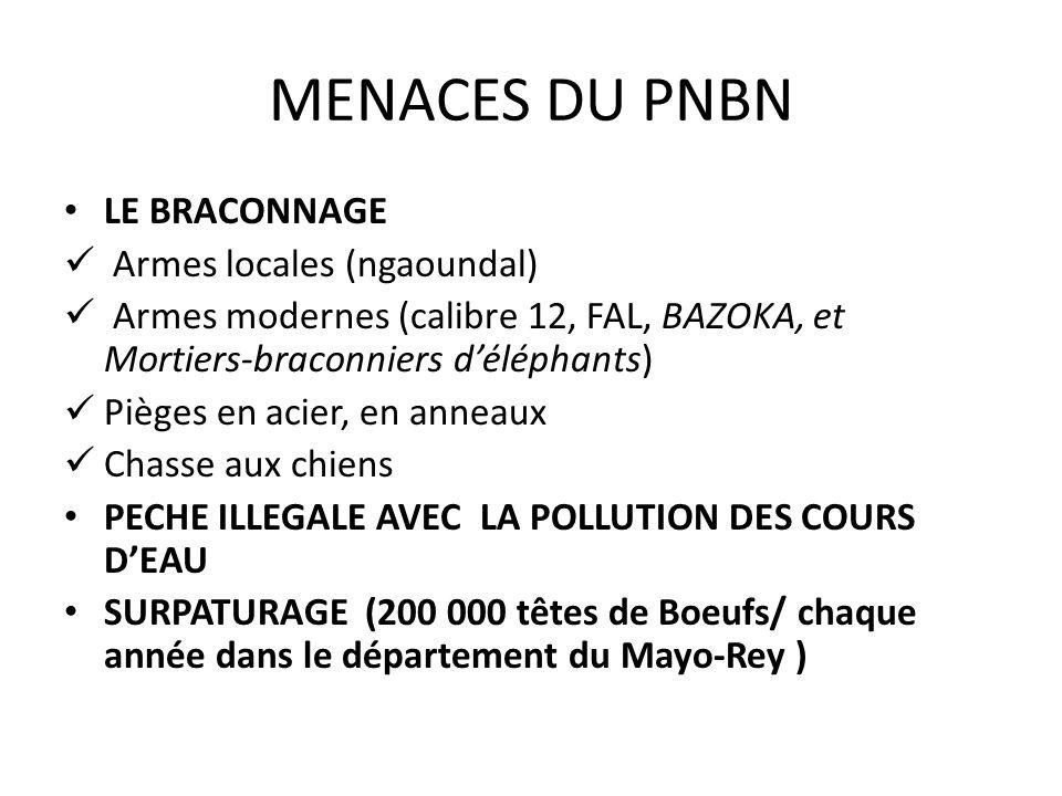 MENACES DU PNBN LE BRACONNAGE Armes locales (ngaoundal)