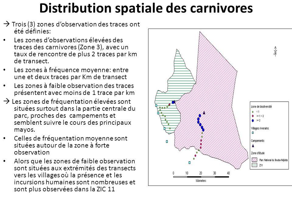 Distribution spatiale des carnivores