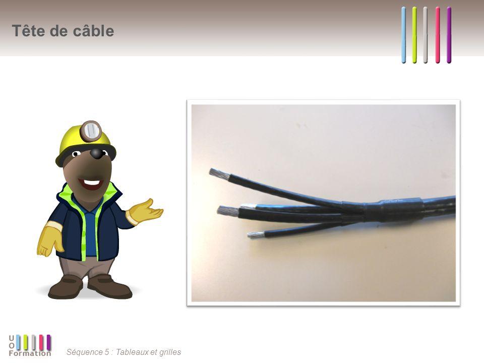 Tête de câble