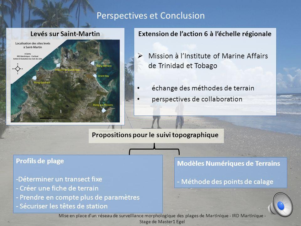 Perspectives et Conclusion