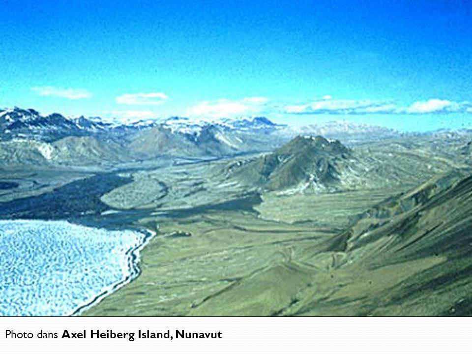 Photo dans Axel Heiberg Island, Nunavut