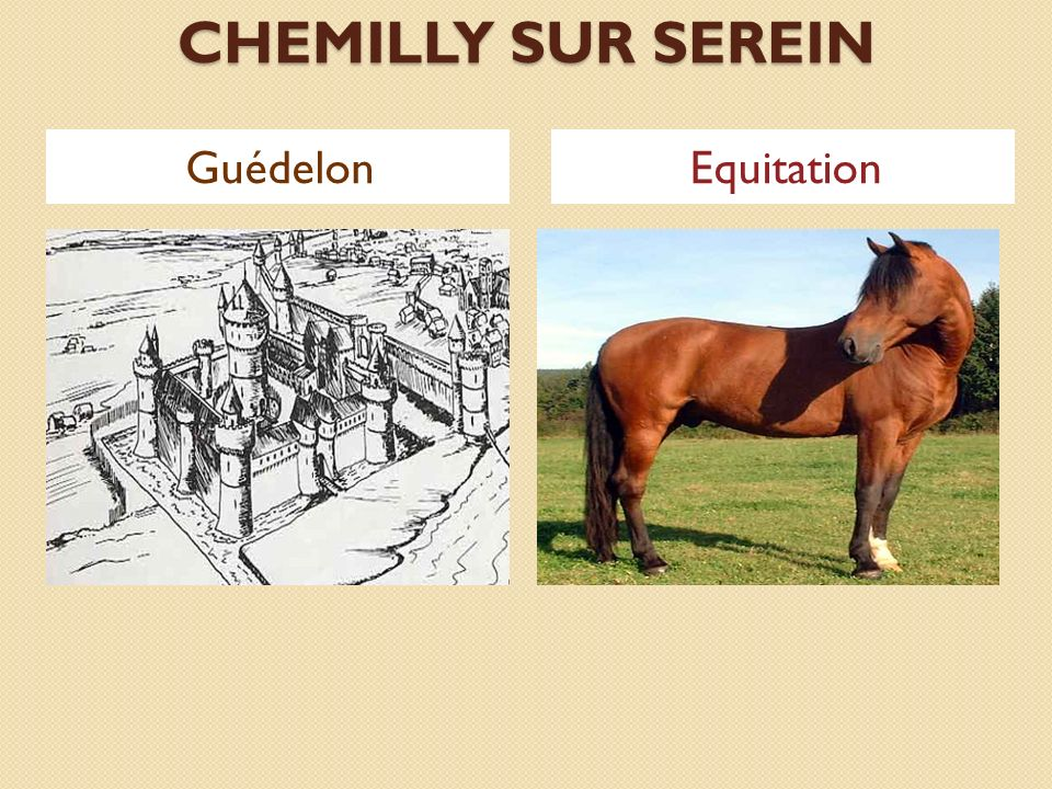 CHEMILLY SUR SEREIN Guédelon Equitation