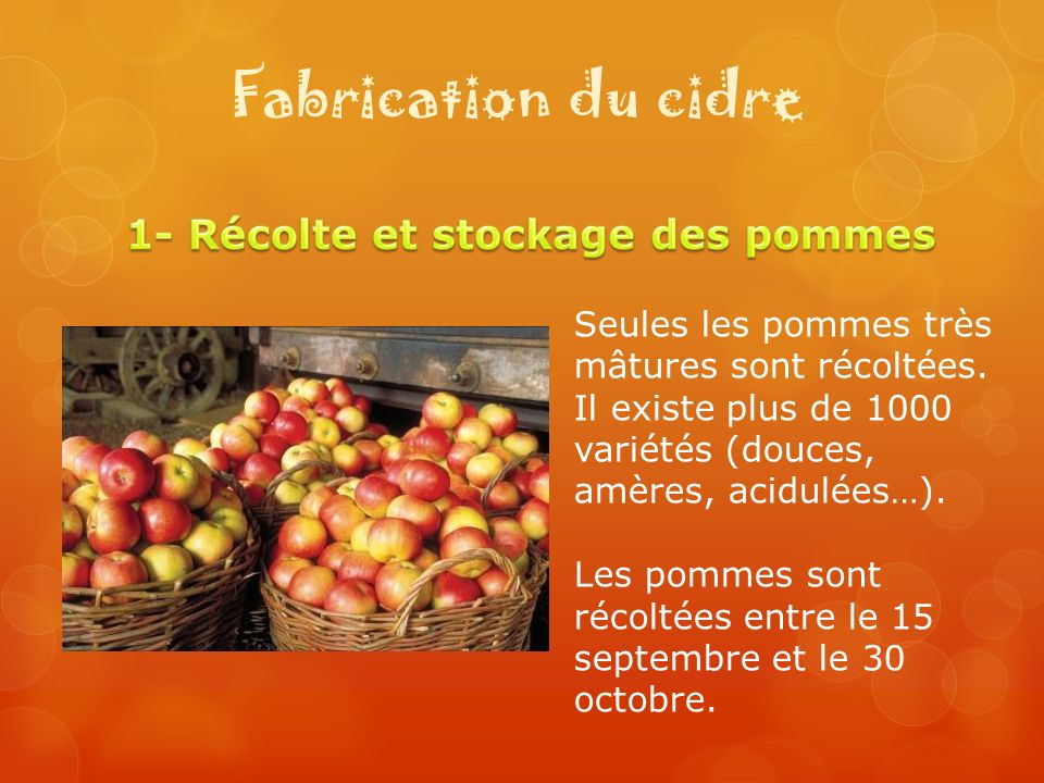 1- Récolte et stockage des pommes