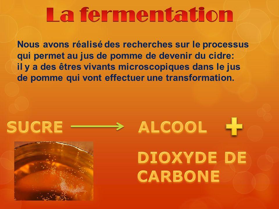 La fermentation SUCRE ALCOOL DIOXYDE DE CARBONE