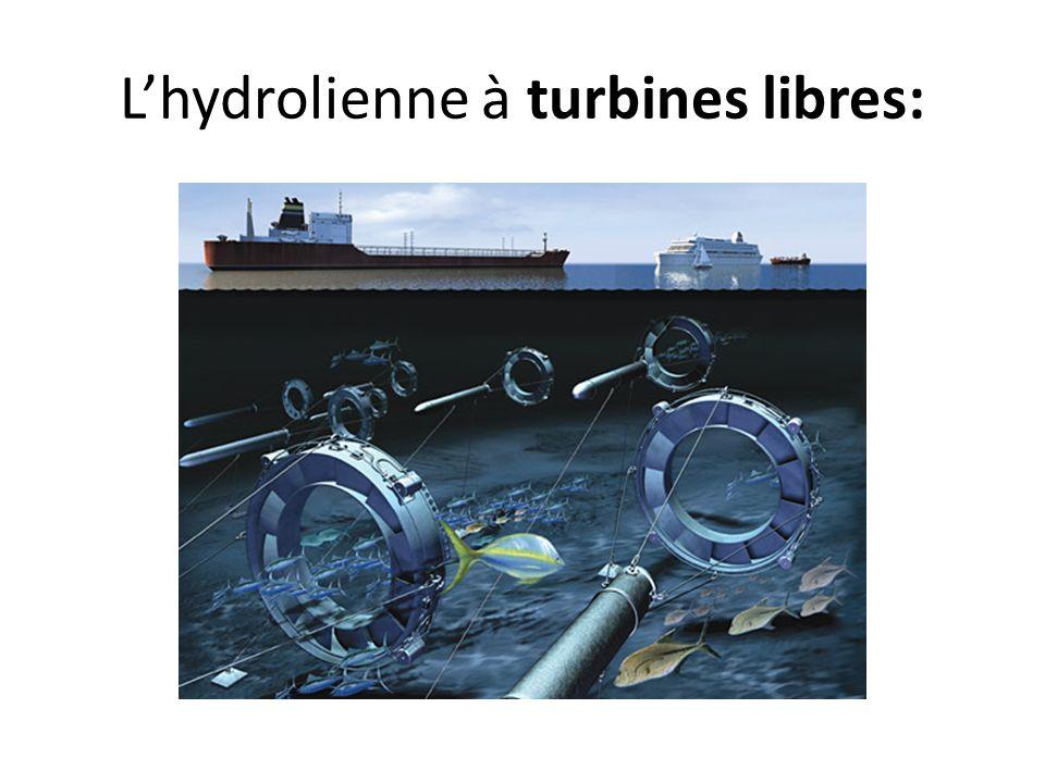 L'hydrolienne à turbines libres: