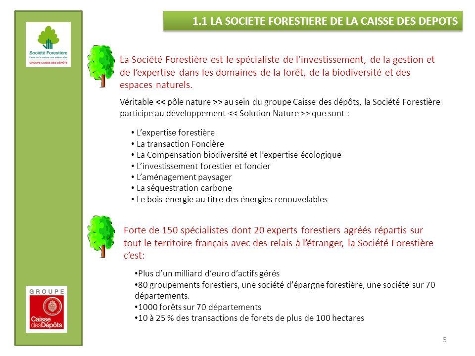 1.1 LA SOCIETE FORESTIERE DE LA CAISSE DES DEPOTS