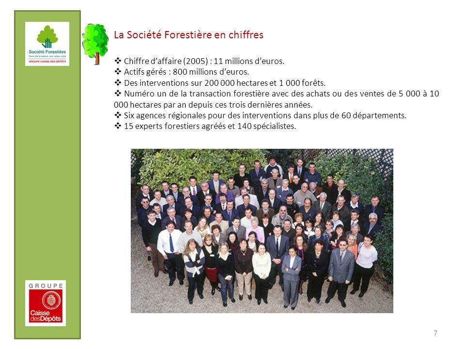 La Société Forestière en chiffres