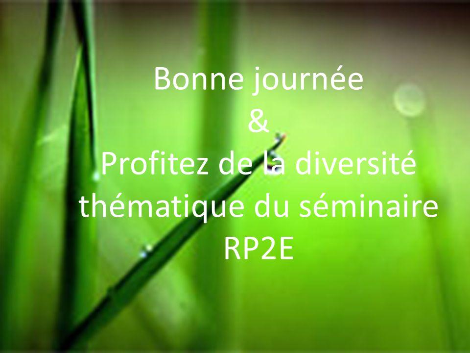 Profitez de la diversité thématique du séminaire RP2E