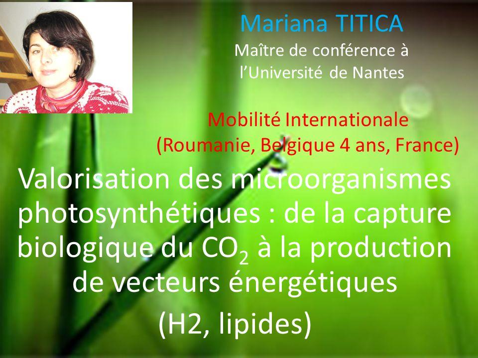 Mariana TITICA Maître de conférence à l'Université de Nantes