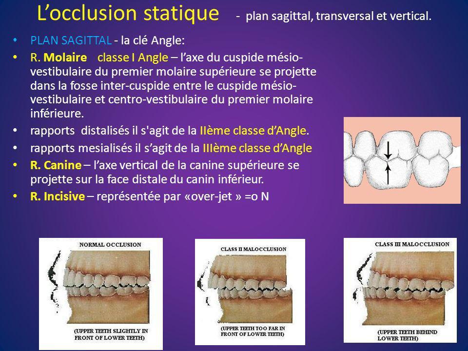 L'occlusion statique - plan sagittal, transversal et vertical.