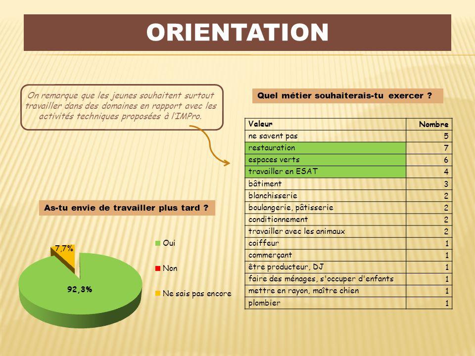 Orientation On remarque que les jeunes souhaitent surtout travailler dans des domaines en rapport avec les activités techniques proposées à l'IMPro.
