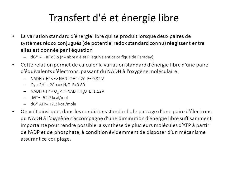 Transfert d é et énergie libre