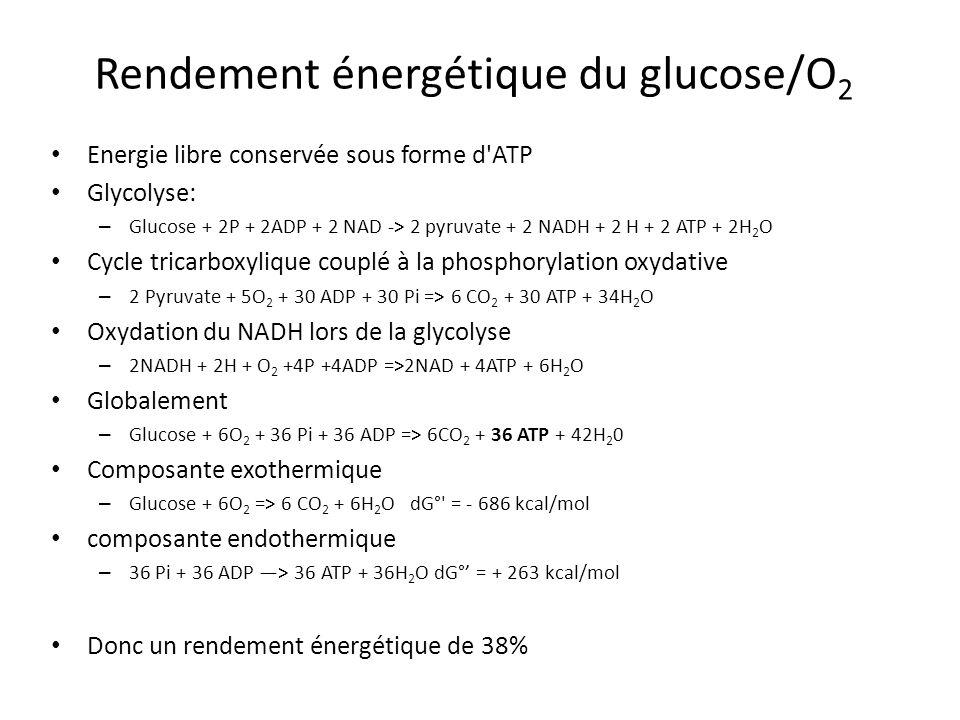 Rendement énergétique du glucose/O2