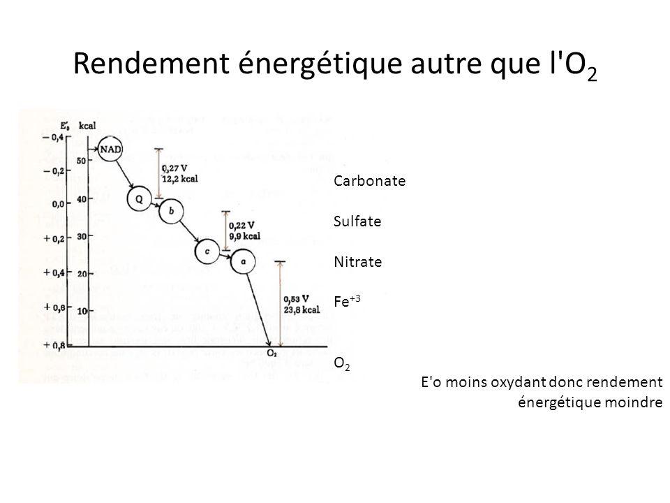 Rendement énergétique autre que l O2