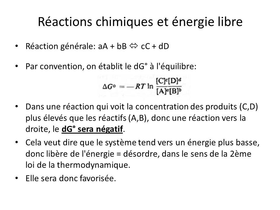 Réactions chimiques et énergie libre
